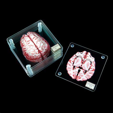 Brain Specimen Coasters Additional Image