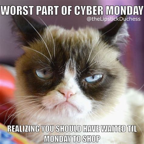 Cyber Monday Meme - 17 best images about makeup memes by the duchess on pinterest master plan matte lipsticks and