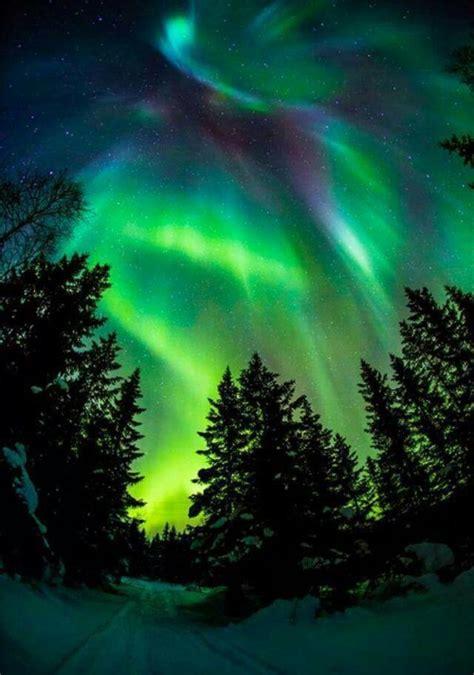 Awesome Aurora Tumblr