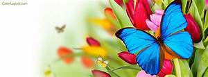 Blue Butterfly Flowers Facebook Cover, Blue Butterfly ...