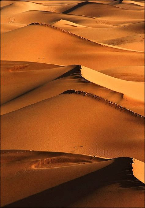 1000 Images About Magical Morocco On Pinterest Moroccan