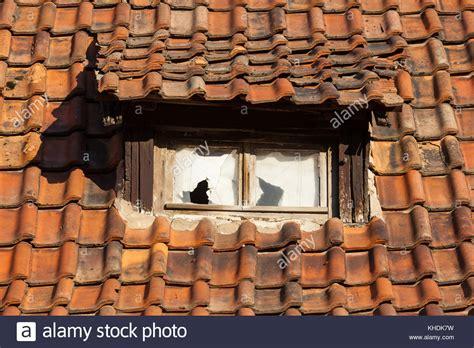 Richtig Dämmen Dach by Altes Dach Isolieren Dach Isolieren Mit Dfsperre So