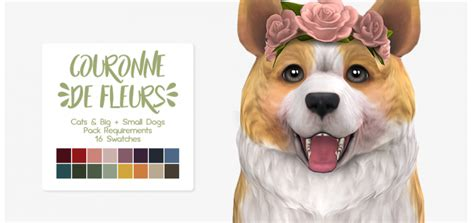 Nolan Sims' Flower Crown For Pets
