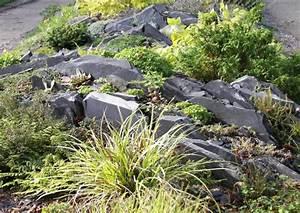 Gräser Für Steingarten : felsspaltengarten schichtgestein im steingarten ~ Michelbontemps.com Haus und Dekorationen