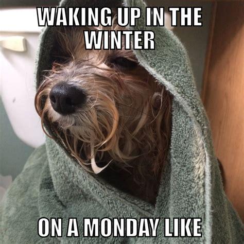 Winter Memes Sofia Winter Monday Mornings Meme Memes