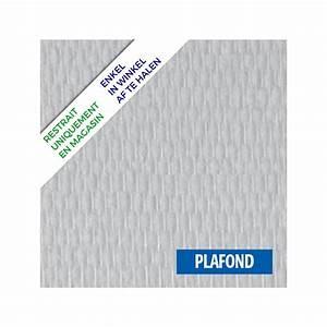Pose Toile De Verre : fibre de verre toile plafond ~ Dailycaller-alerts.com Idées de Décoration