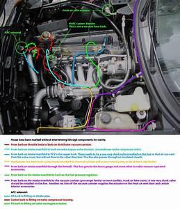 Vacuum Hose Diagram  Color