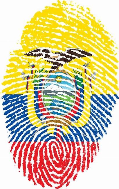 Ecuador Flag Facts Interesting Fingerprint Fun Country