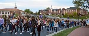 Sorority Raises Domestic Violence Awareness through Campus ...