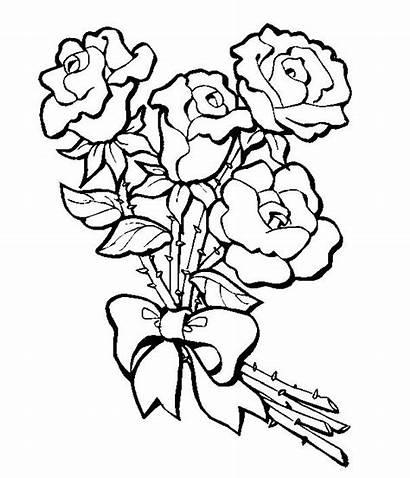 Flores Ramo Desenhos Lindo Rosas Colorir