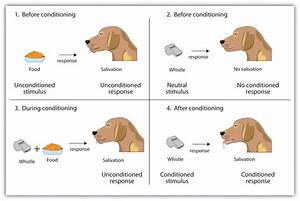 The Radical Education  Classical Conditioning