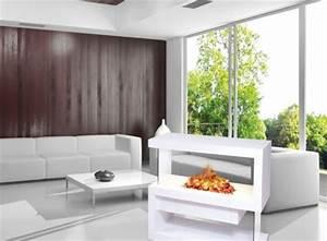 Elektrokamin 3d Wasserdampf : der 3d elektrokamin wie funktioniert die technik elektrokamine und ethanol kamine ~ Sanjose-hotels-ca.com Haus und Dekorationen