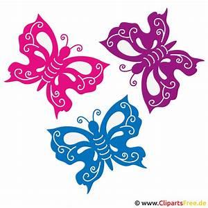 Bunte, Schmetterlinge, Bild
