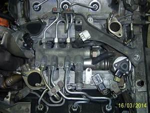 Vanne Egr Espace 4 : espace iv d pose moteur et joints de culasses 3 0l v6 dci p0 plan te renault ~ Gottalentnigeria.com Avis de Voitures