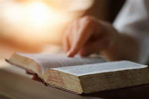 What the Bible ... Bible Online