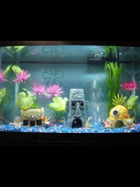 Ideas For Fish Tank by 95 Best Fish Tank Aquarium Images On