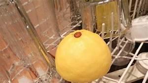 Déboucher Un Lave Vaisselle : l 39 astuce pour d sodoriser votre lave vaisselle avec un citron ~ Dode.kayakingforconservation.com Idées de Décoration