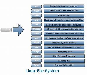 Linux Skills  Linux File System Structure