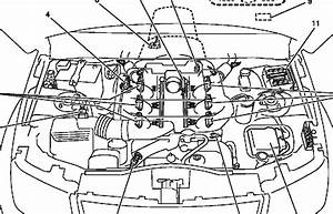 Nissan Juke Radio Wiring Diagram  Nissan  Free Engine Image For User Manual Download