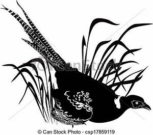Vector Clip Art of bird pheasant csp17859119 - Search ...