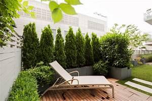 Pflanzen Für Dachterrasse : terrassensichtschutz ideen bilder und 20 inspirierende ~ Michelbontemps.com Haus und Dekorationen