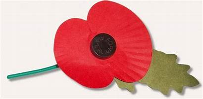 Poppy Remembrance Vancouver Paper Homeless British Eight
