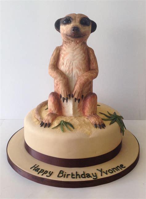 animal birthday cakes cakes  robin
