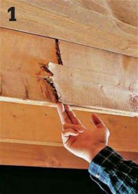 Sistering Floor Joists With Steel by How To Repair A Cracked Or Sagging Joist Home