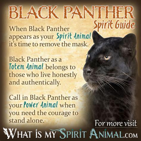 black meaning mammal symbolism meaning spirit totem power animal