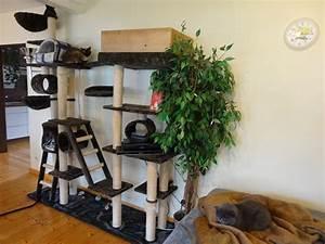 Kratzbaum Selber Machen : kratzbaum selber bauen kratzbaum selber bauen einebinsenweisheit ~ Orissabook.com Haus und Dekorationen