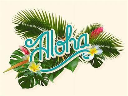 Aloha Hawaii Hawaiian Flowers Tropical Prijave Animated