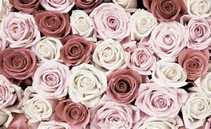 Tapete Blumen Modern : kiss fototapeten zu besten preisen fototapete no 1482 vliestapete blumen tapete rosen ~ Eleganceandgraceweddings.com Haus und Dekorationen