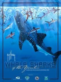 Whale Shark Guy Harvey Paintings