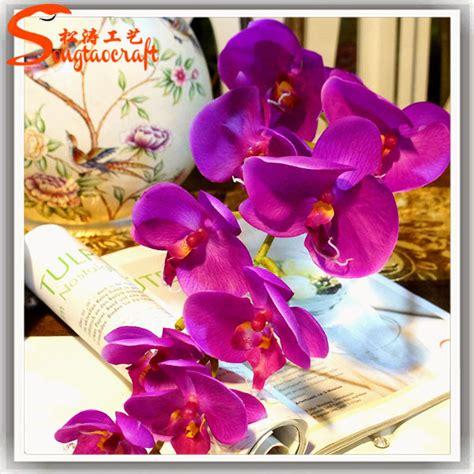 duree de vie d une orchidee en pot papillon orchid 233 es plantes 224 la sentiment pour orchid 233 es pour vente en pot artificielle en