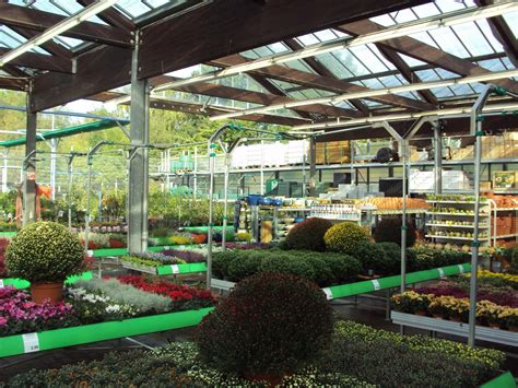 Garten Kaufen Zwickau by Leitermann Gmbh Co Fachmarkt Kg Zwickau