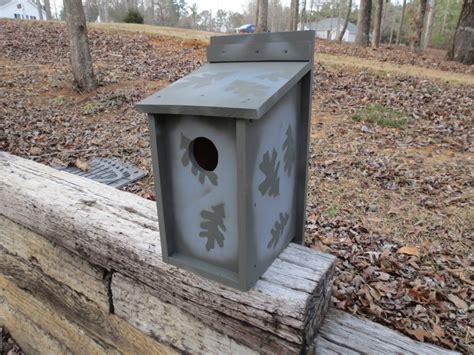 screech owl box