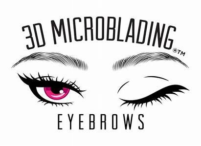 Eyebrow Clipart Microblading Bushy Eyebrows Cost Near