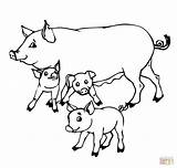 Coloring Pigs Pig Pages Drawing Mother Printable Outline Piglet Mom Cartoon Colouring Adults Super Getdrawings Supercoloring Draw Paper Adorable Marvelous sketch template