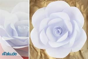 Blumen Aus Papier : papierblumen selber basteln 5 ideen ~ Udekor.club Haus und Dekorationen