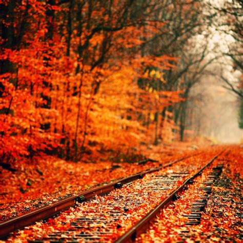 Aesthetic Fall Themed Desktop Backgrounds by 8tracks Radio That Fall Aesthetic 11 Songs Free And