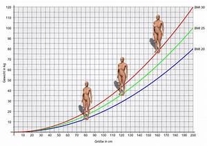 Bmi Mann Berechnen : bmi rechner body mass index mit 3d k rperansicht bmi 3d ~ Themetempest.com Abrechnung