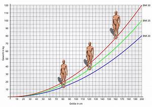 Bmi Berechnen Formel Frau : bmi rechner body mass index mit 3d k rperansicht bmi 3d ~ Themetempest.com Abrechnung