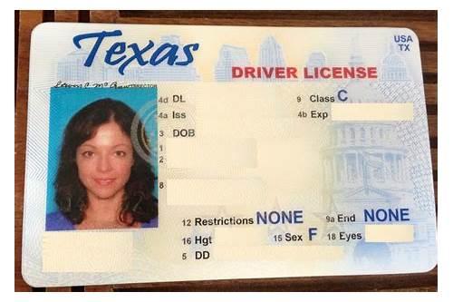 Download Drivers Template License Sersecherna Texas