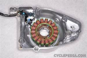 Suzuki Tu250x Electrical Charging Ignition Starter