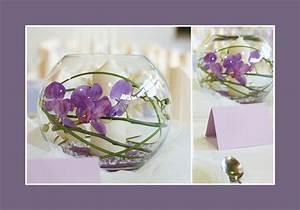 Orchideen Im Glas : orchideen im glas deko mama pinterest ~ A.2002-acura-tl-radio.info Haus und Dekorationen