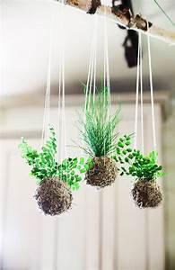 Kokedama Selber Machen : this listing is for a set of 3 hanging kokedama string garden in natural spanish moss ball ~ Orissabook.com Haus und Dekorationen