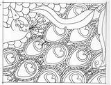 Peacock Coloring Adult Outline Drawing Adults Colouring Peacocks Drawings Patterns Feather Zentangle January Bird Detailed Line Getdrawings Library Clipart Breathe sketch template