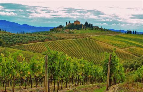 best wineries in chianti best destinations for wine tasting pre tend magazine