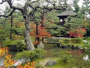 Les Plus Beaux Arbres Pour Le Jardin : jardin japonais jardinage ~ Premium-room.com Idées de Décoration