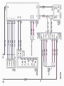 Yamaha 350 Warrior Wiring Schematic